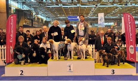 Salon de l agriculture 2012 concours g n ral agricole - Salon de l agriculture resultat concours ...