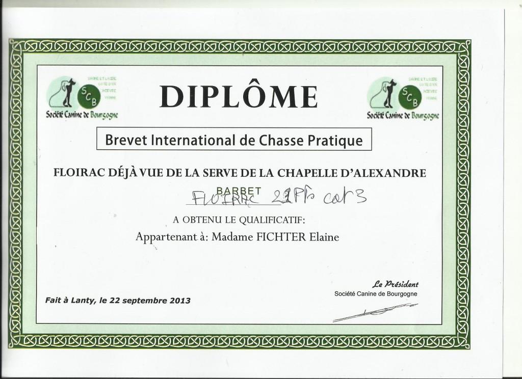 BICP_French