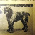 Barbet_Pyrrham, 1er 'prix Poitiers 1927, à M. Besson L'El eveur 19 janvier 1930.