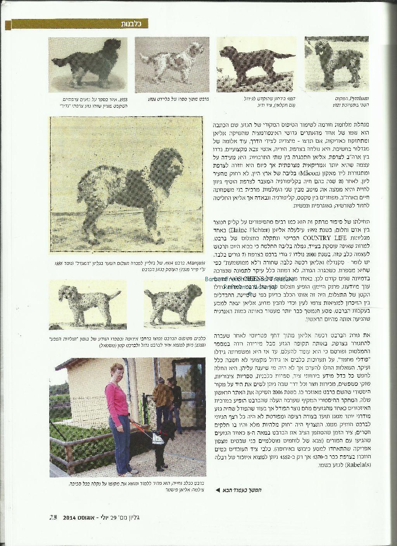 Article_Hebrew4wm