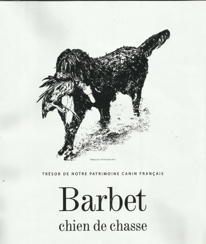 thelma_barbet