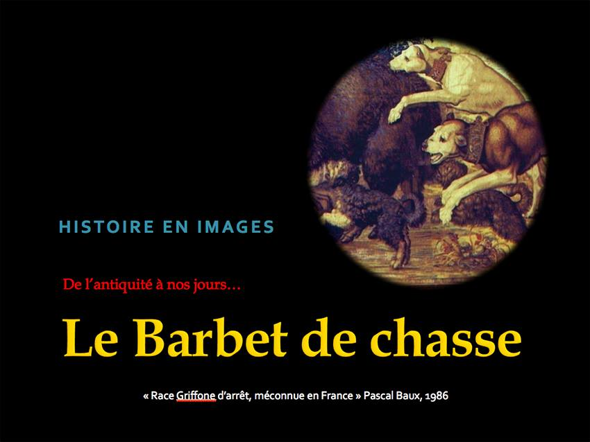 barbet_history